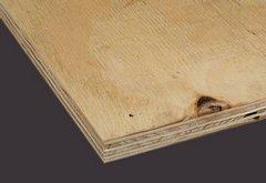 seekiefer sperrholz